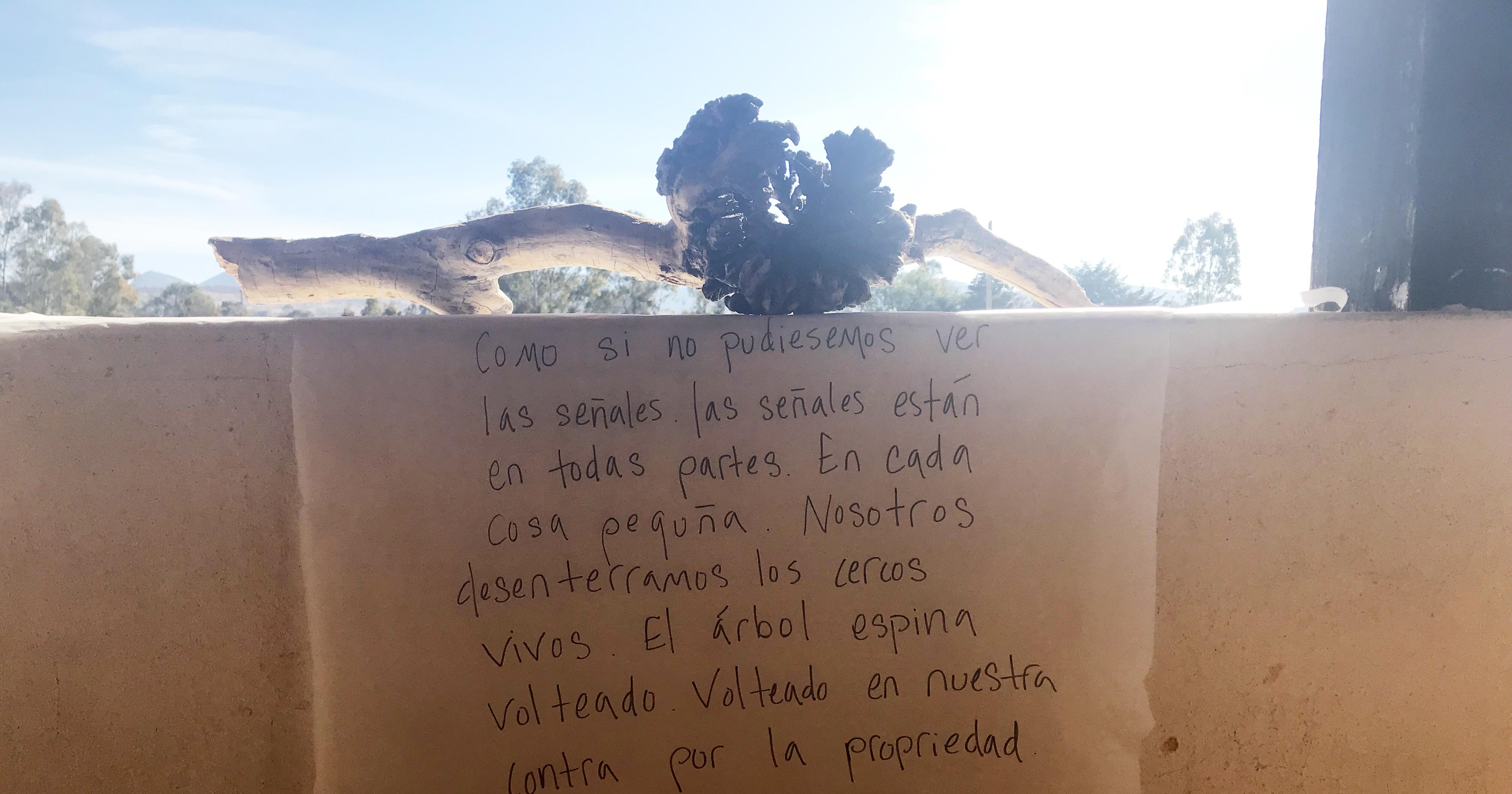 'Intelligence' at Guapamacataro Arts and Ecology Center Residency